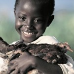 Give a gift of life through Heifer International.