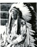 Crow Indian Chief Plenty Coups