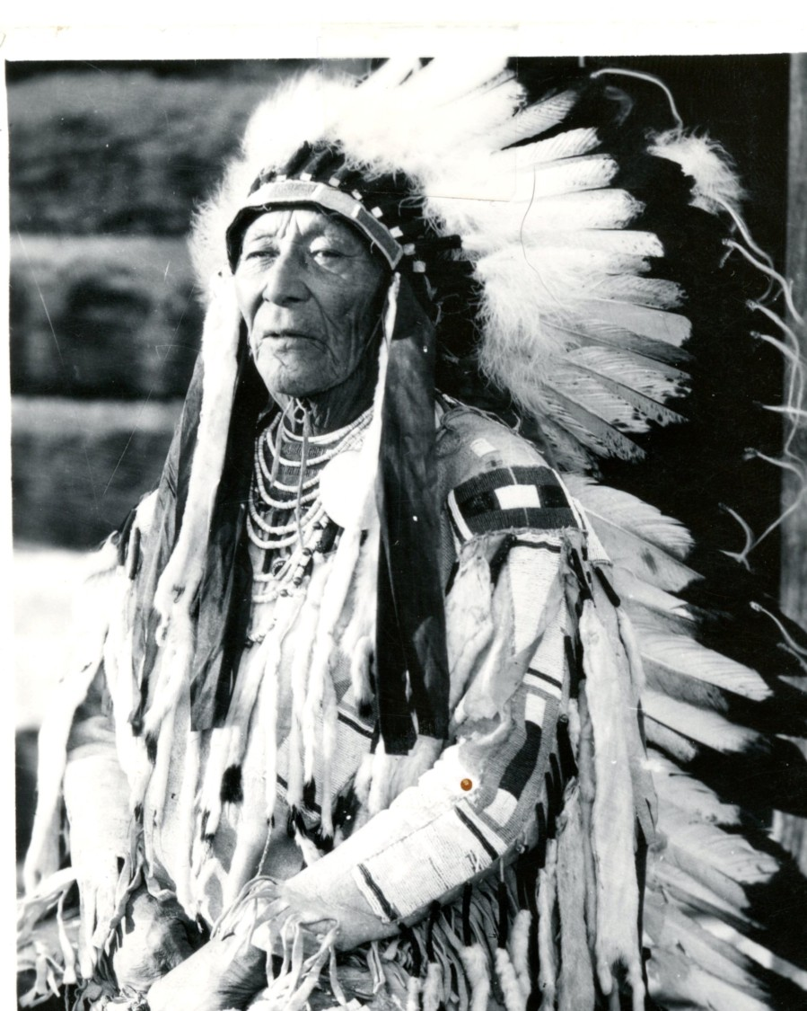 Crow Indian Chief Plenty Coups